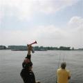 image barbeelwedstrijd-01-06-2008-18-jpg