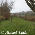 image inbraak-loods-hengelsportvereniging-20-04-2012-10-jpg