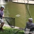 image kroneburgerpark-2007-3-jpg
