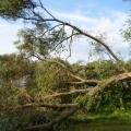 image stormschade-kasteelshehof-28-07-2013-13-jpg