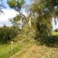 image stormschade-kasteelshehof-28-07-2013-15-jpg