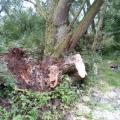 image stormschade-kasteelshehof-28-07-2013-18-jpg