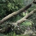 image stormschade-kasteelshehof-28-07-2013-2-jpg