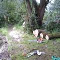 image stormschade-kasteelshehof-28-07-2013-23-jpg
