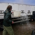 image vis-uitgezetting-in-ooijpolder-2011-18-jpg