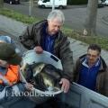 image 2e-vis-uitzetting-2011-20-jpg