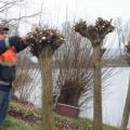 Vrijwilligerswerk van de voorn in onderhoud jaar 2013