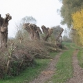 image water-over-pompen-werk-dagen-2010-23-jpg