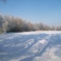 image winterfotos-kasteelshehof-11-09-2012-1-jpg