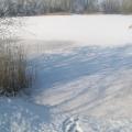 image winterfotos-kasteelshehof-11-09-2012-12-jpg