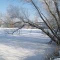 image winterfotos-kasteelshehof-11-09-2012-14-jpg