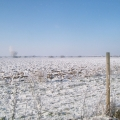 image winterfotos-kasteelshehof-11-09-2012-5-jpg