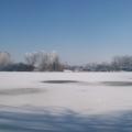 image winterfotos-kasteelshehof-11-09-2012-7-jpg
