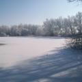 image winterfotos-kasteelshehof-11-09-2012-8-jpg