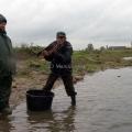 image vis-uitgezetting-in-ooijpolder-2011-100-jpg
