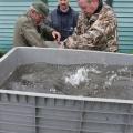 image vis-uitgezetting-in-ooijpolder-2011-20-jpg