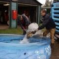 image vis-uitgezetting-in-ooijpolder-2011-32-jpg
