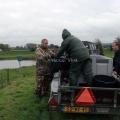 image vis-uitgezetting-in-ooijpolder-2011-93-jpg