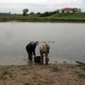 image vis-uitgezetting-in-ooijpolder-2011-96-jpg