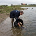 image vis-uitgezetting-in-ooijpolder-2011-97-jpg